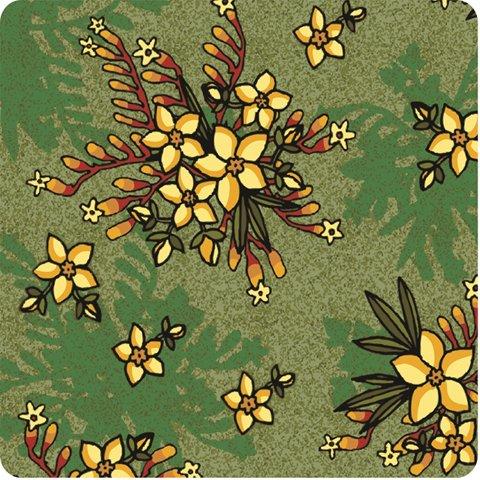 Kangaroo-Paw-Guinea-Flower-Green