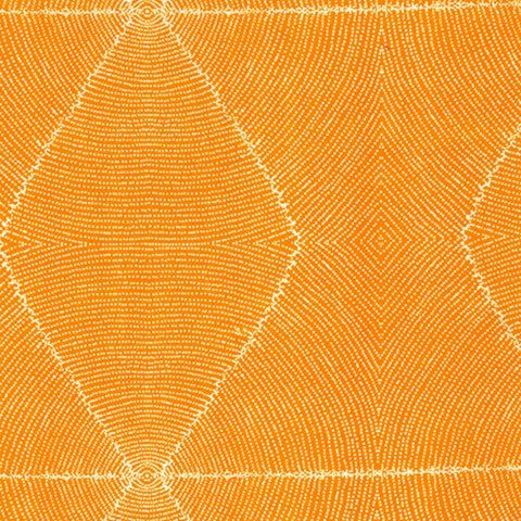 Plum-Seeds-Orange-480-e1503535497834.jpg